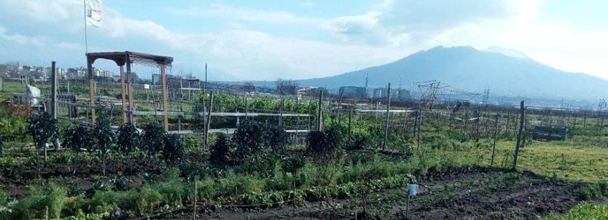 Masseria Ferraioli