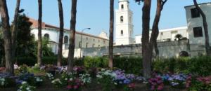 pineta comunale Afragola